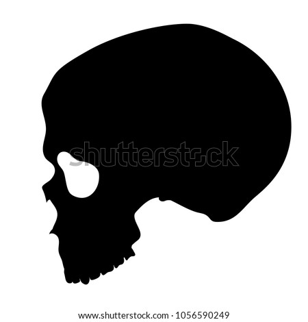 Vector human skull side view silhouette