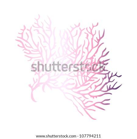 vector icon coral