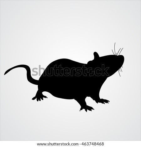 vector, icon rat