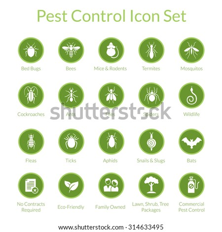 Vector icon set with insects like flies, cockroaches, bed bugs, spiders and termites for pest control companies Foto d'archivio ©