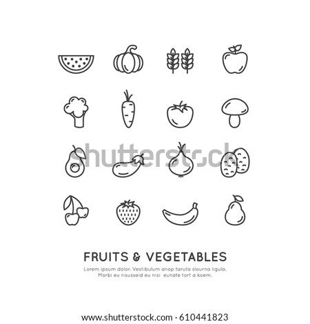 Vector Icon Style Illustration Logo for Organic Vegan Healthy Shop or Store. Green Natural Vegetable and Fruit Symbols, Farmer Market Countryside