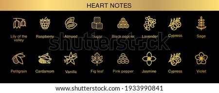 Vector icons aromas heart notes. Top notes pyramid chart with examples of popular aroma essences. Smell categories are oriental, woody, fresh and floral. Trend  examples of scents.