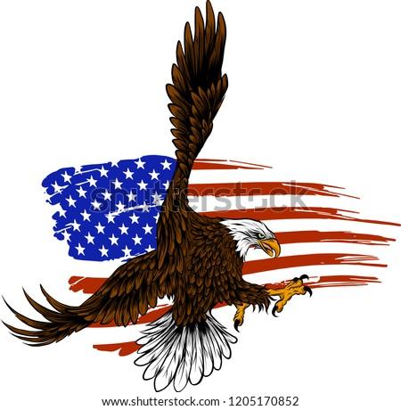 vector illustation american