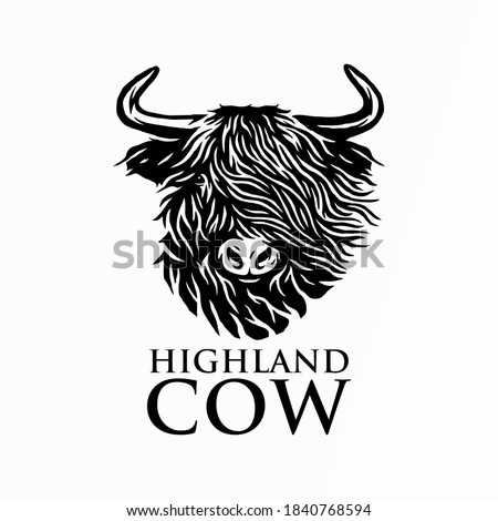 Vector Illustrated portrait of Highland cattle, cow. Cute head of Scottish cattle on white background.