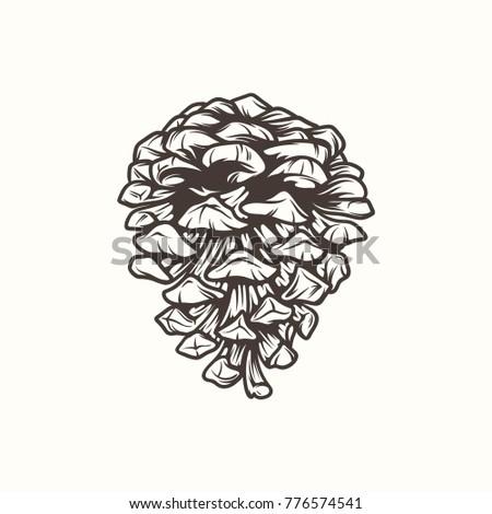 Vector illustration a cones