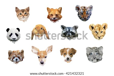 vector illustration animal