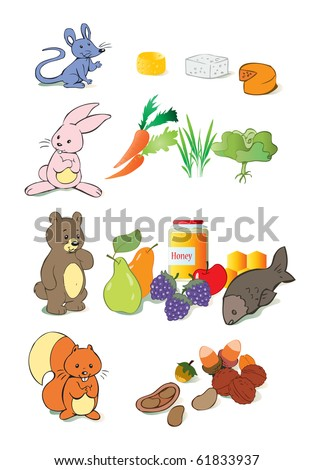 vector illustration, animal's favourite food, education concept, white background. - stock vector