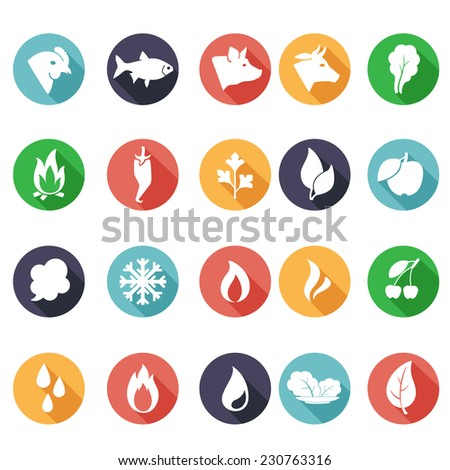 Vector illustration Animals, leaves, fire, frost, steam, water icons. Flat style