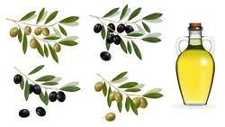 Vector illustration. Big set with green and black olives and bottle of olive oil. .