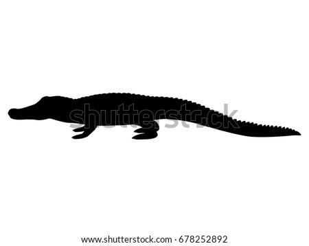 Vector illustration black silhouette crocodile. Isolated white background. Icon animal crocodile side view profile.