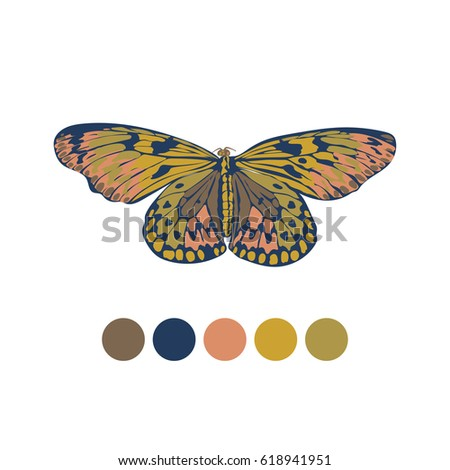Vector illustration. butterfly with color samples for  fashion trends.palette colors fall 2017