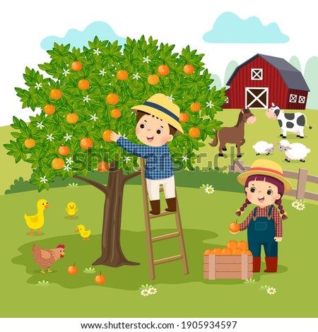 Vector illustration cartoon of little boy and little girl picking oranges in the farm.