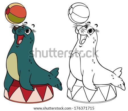Vector illustration coloring drawing juggler seal cartoon concept