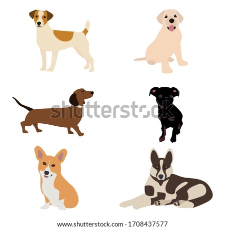 Vector illustration. Dogs of different breeds are depicted on the canvas, for example, a shepherd, a dachshund, a corgi, a jack russell, a labrador. Milky colors, doggie cute smile