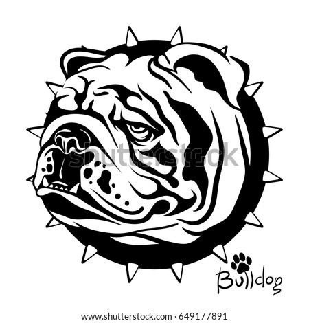 Vector illustration, drawing of a dog of breed English Bulldog