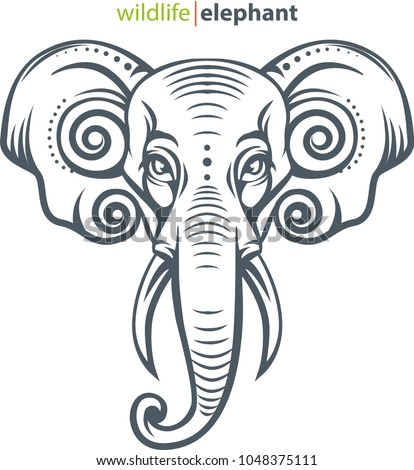 vector illustration  elephant