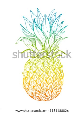Vector illustration eps10 isolated on white background. Realistic food drink symbol, 3d hand drawn gradient pineapple fruit. Cartoon cute ananas drawing icon, watercolor pastel colors. Retro flat sign