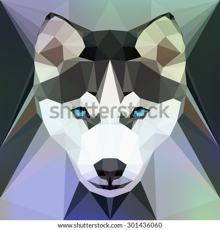 vector illustration   face of a