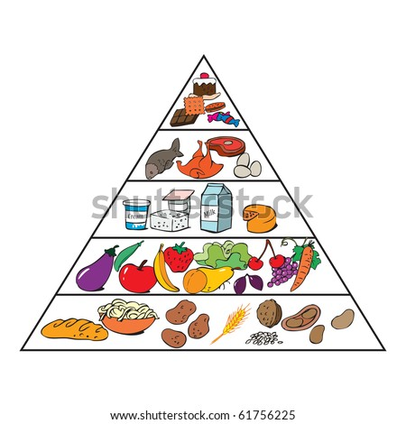 vector illustration, food pyramid for kids, cartoon concept, white ...