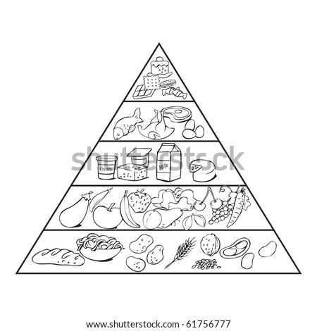vector illustration, food pyramid ready for get coloured, education concept, white background,