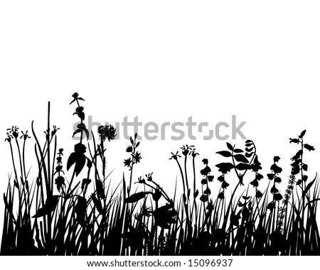 Vector illustration grass background for design use
