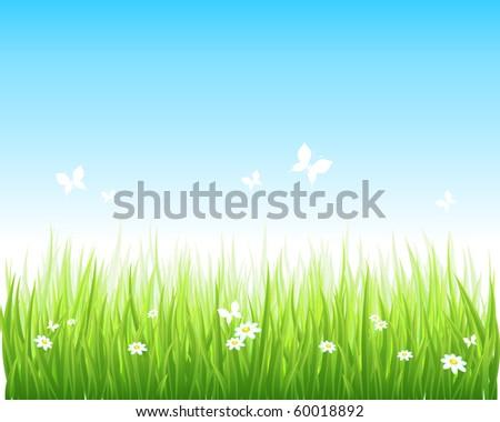 Vector illustration grassy green field and blue sky.
