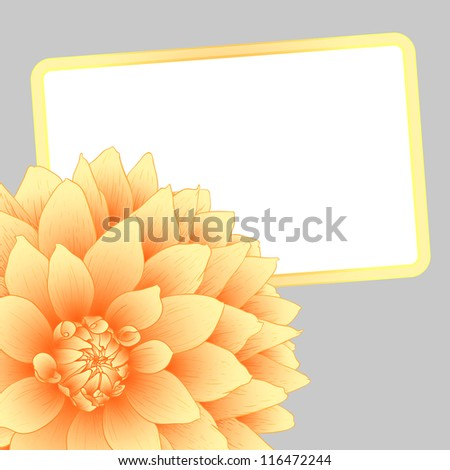 Vector illustration greeting card with orange dahlia.