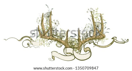 Vector illustration. Hand drawing on a graphic tablet.Antlers and herbs entwined ribbon.