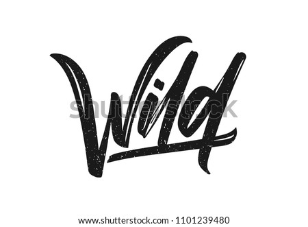 Vector illustration: Hand drawn brush type calligraphic lettering of Wild on white background