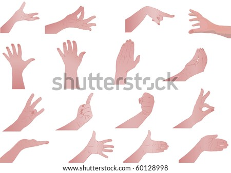Vector illustration  hands set of the person isolated on white background