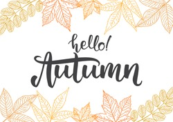Vector illustration: Handwritten lettering  of Hello Autumn on hand drawn leaves background. Outline sketch design
