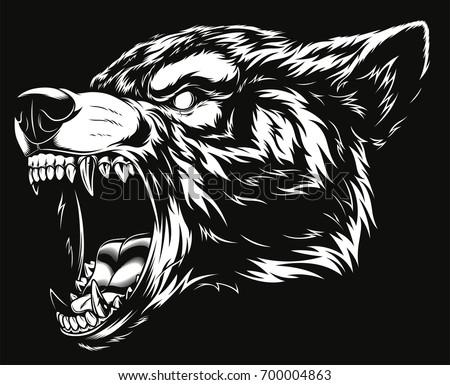 vector illustration head