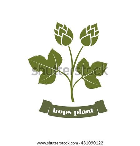 vector illustration hops on a white background hops plant, hop leaves, hop symbol, beer symbol, brewery emblem / hop plant emblem