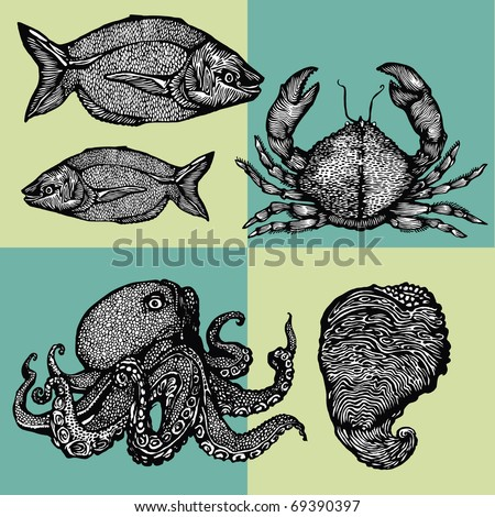 Vector illustration - image-vector images on the theme of seafood