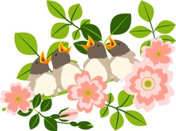 Vector illustration in flat style. Little birds are waiting for parents on a flowering branch of a wild rose.
