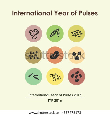 vector illustration / international year of pulses