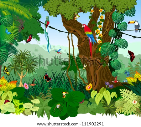 vector illustration jungle with