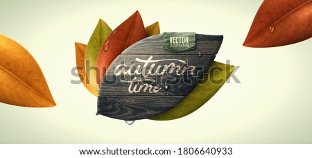 Vector illustration. Leaves and leaf shaped wood. Autumn, fall concept.