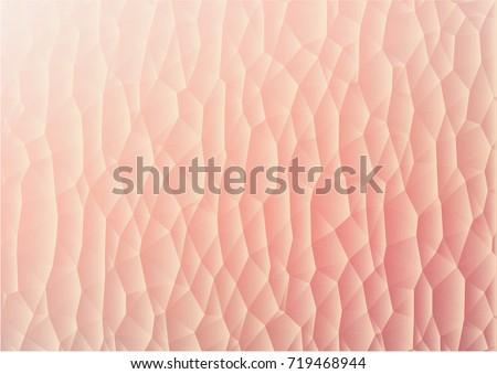 vector illustration like human skin