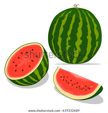 Vector illustration logo for whole ripe red fruit watermelon, green stem, cut half, sliced slice berry with red flesh. Watermelon pattern from natural sweet food. Eat tasty tropical fruits watermelons