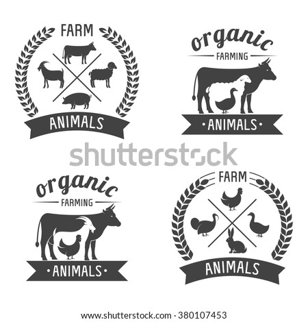vector illustration logos and