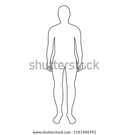 Vector illustration. Male human body silhouette