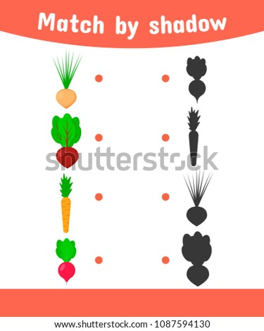 vector illustration. Matching game for children. Connect the shadow of the vegetables. onions, beets, carrots, radishes