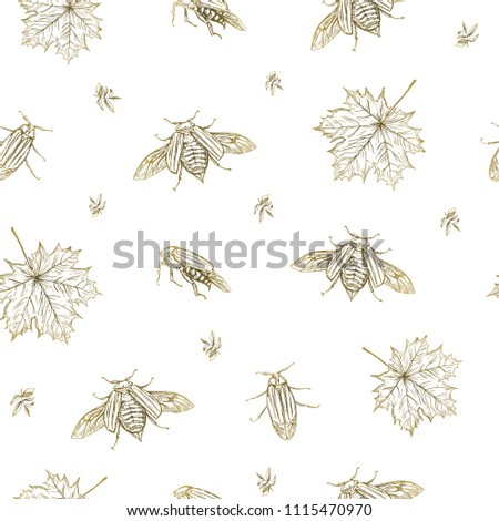 Vector illustration. May bug and leaves seamless pattern. Pen style vector sketch. Paper design element.