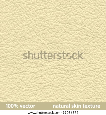 vector illustration. natural skin textures