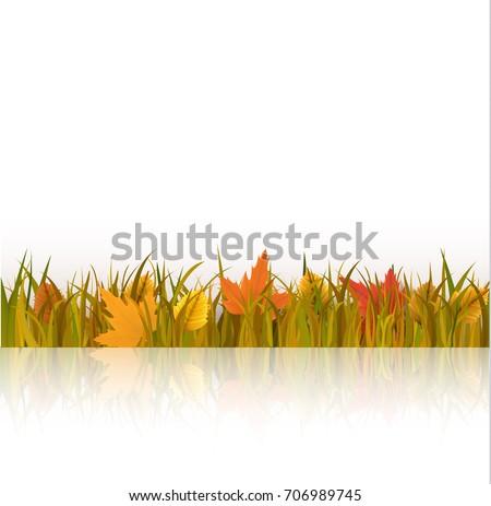 vector illustration of a autumn