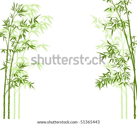 vector illustration of a bamboo