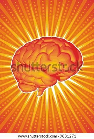 Vector illustration of a brain. - stock vector