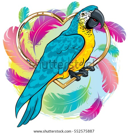 vector illustration of a bright yellow parrot bird with blue wings background feathers