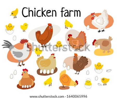vector illustration of a cartoon chicken farm stylization. Rooster, hens and chickens in an egg. counting chickens and roosters, different poses of chickens